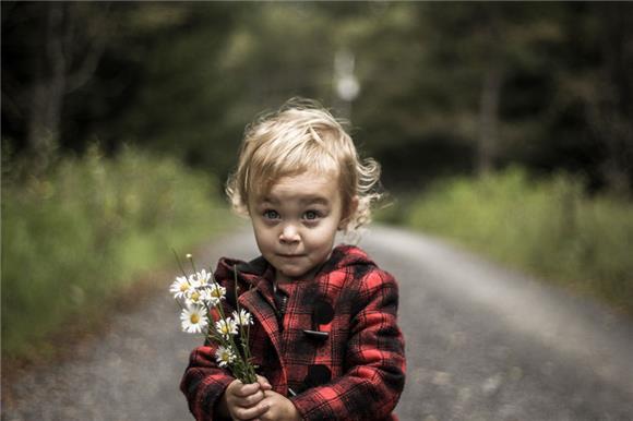 «Дети вместо цветов»: собрано 4 млн рублей